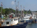 Cape Cod 34